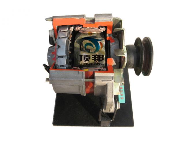 汽车发电机解剖模型